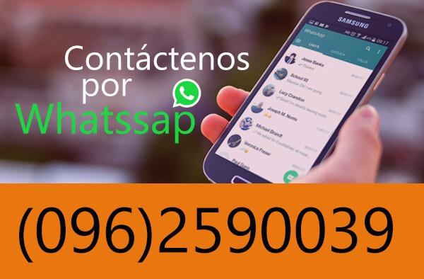 contacto por whatssap